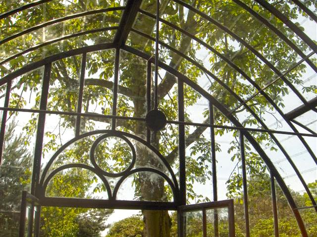 Serre de jardin en verre avec des profils en fer forg for Serre de jardin adossee en verre