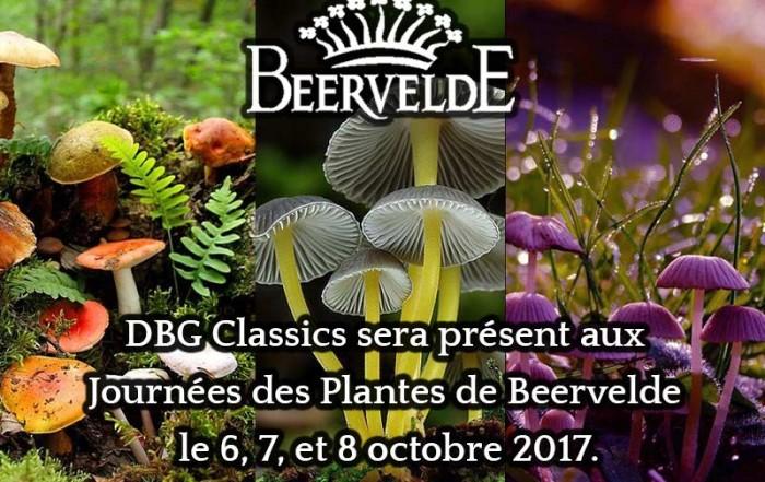 les journées des plantes beervelde octobre 2017 dbg classics