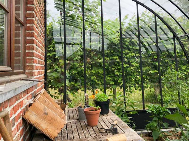 worktable inside greenhouse to easily repot plants dbg classics